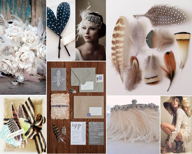 feather_2013trend_cdd
